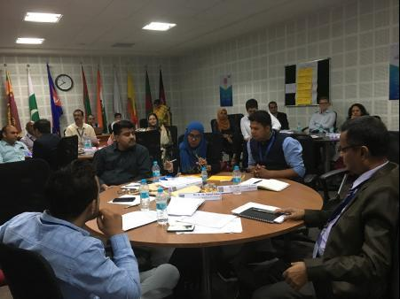 Participants from eight SAARC countries took part in the regional workshop.