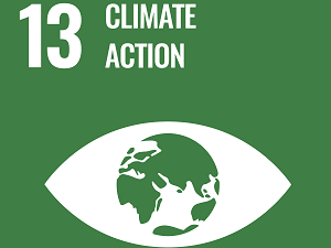 Symbol for SDG13 Climate Action