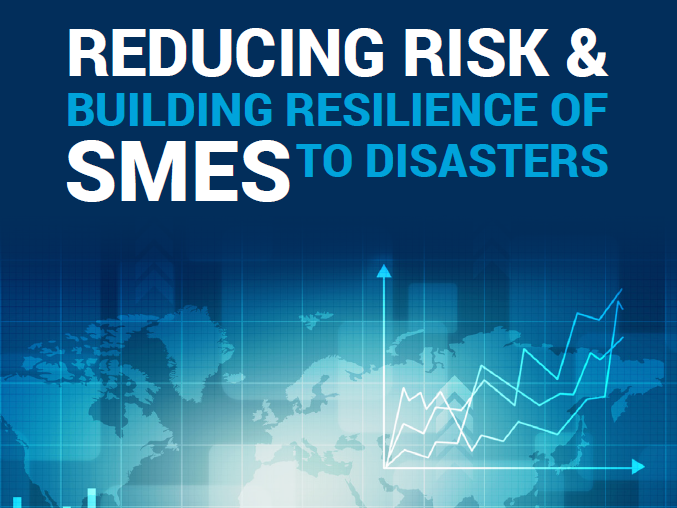 Cover image of Reducing Risk and Building Resilience of SMEs to Disasters