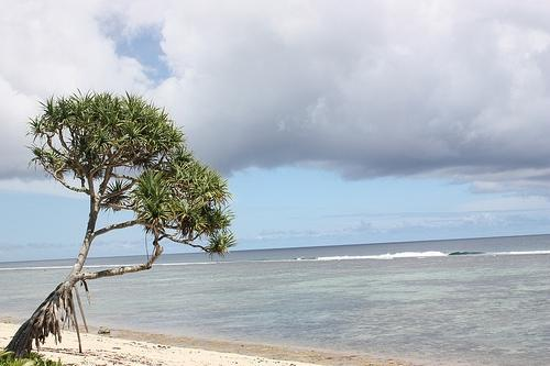 A beautiful inheritance: Tonga's leaders are determined their country will remain resilient.