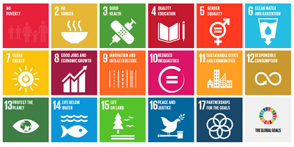 """Transforming our World: The 2030 Agenda for Sustainable Development"" is made up of 17 interlocking goals (Photo: UN)"