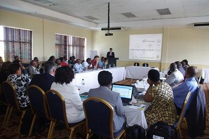 Participants in session at the Malawi peer review (Photo: UNISDR)