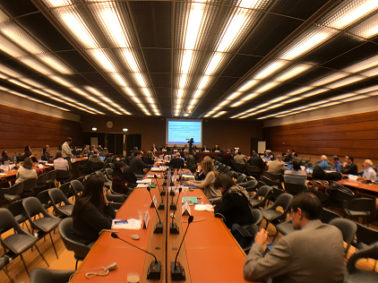 Partipants at the Expert Group on the Global Risk Assessment Framework Meeting, Geneva, 20-21 November 2017 (Photo: UNISDR/SLandelle)
