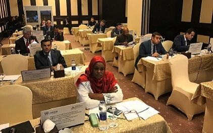 Participants at this week's training in Cairo on the use of the Sendai Framework Monitor (photo: UNISDR)