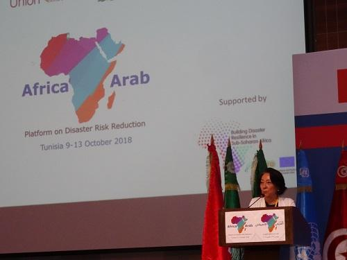 UNISDR head, Mami Mizutori, speaking at the closing ceremony of the joint Africa-Arab States Platform on Disaster Risk Reduction in Tunis