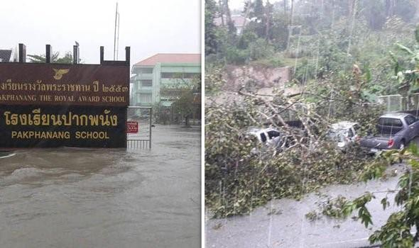 Thailand's storm Pabuk caused damage to schools, flooded streets and brought down trees (Image: LAKANA SMART NEWS/TWITTER)