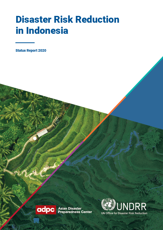 Cover of Disaster Risk Reduction in Indonesia: Status Report 2020
