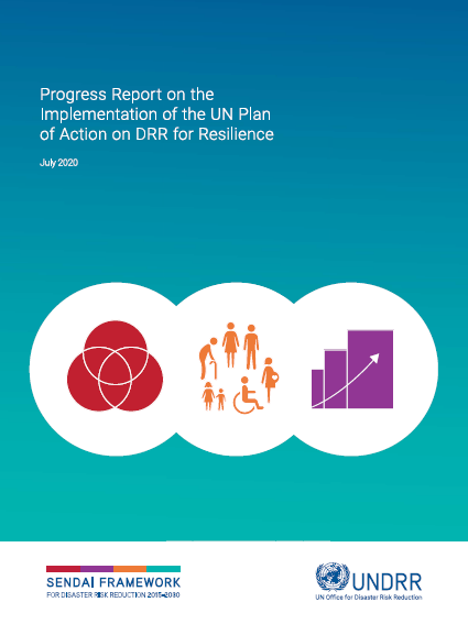 Cover image for Progress report on UN Plan of Action on DRR for Resilience