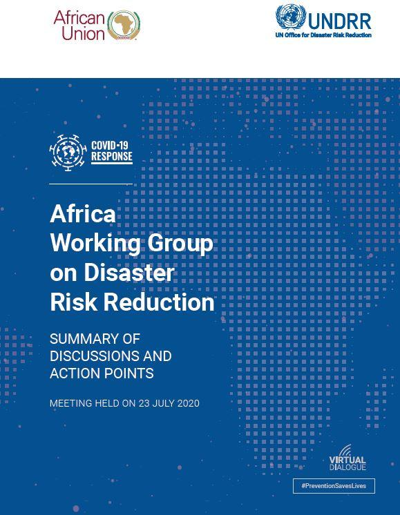 1st Virtual African Working Group on DRR
