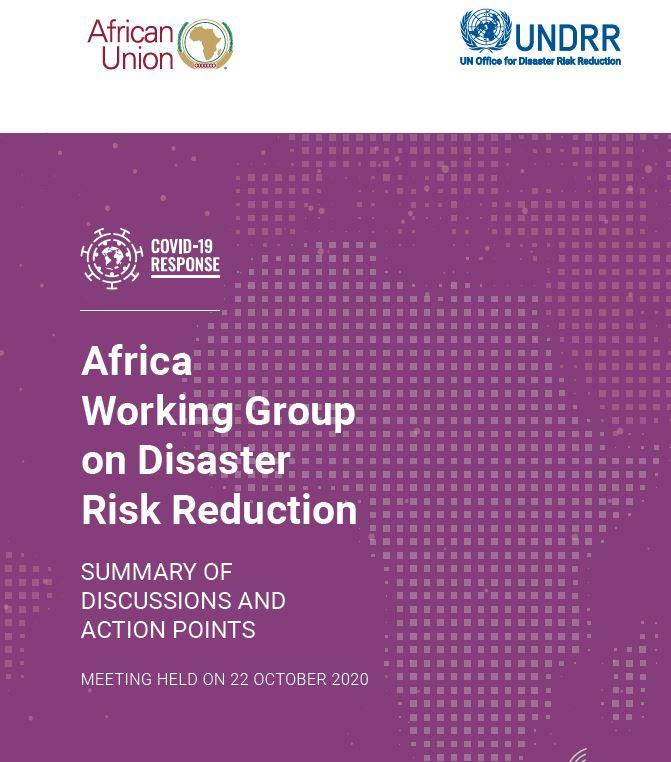 2nd Virtual African Working Group on DRR